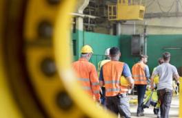 Biomass power creating Jobs